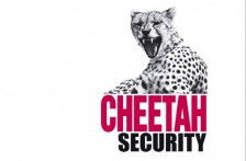 cheetah_Website